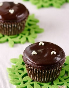 {Sweet San Francisco}: TCHO and Chocolate Mint Filled Cupcakes