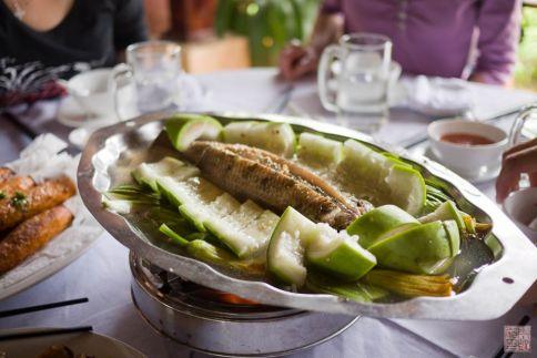 vietnam fish