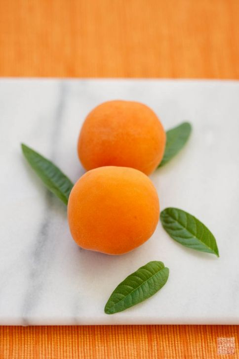 apricot lemon verbena
