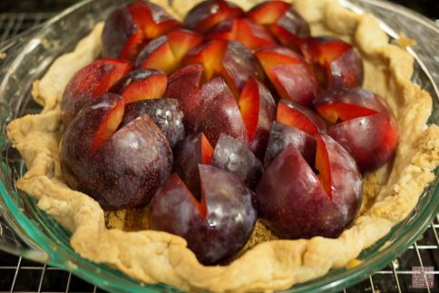 Pluot Tart on dessertfirstgirl.com