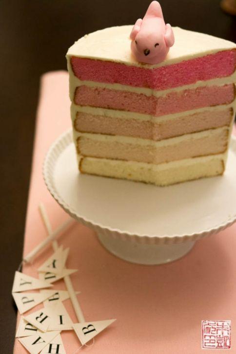 penelope bird pink ombre birthday cake