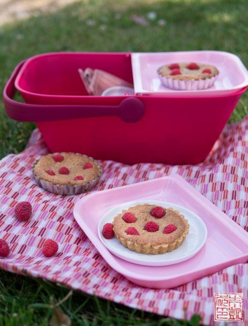 raspberry frangipane tartlets and petnic