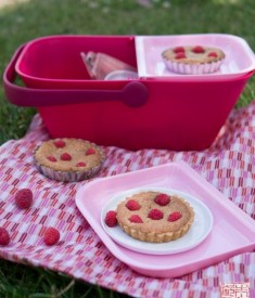 raspberry-frangipane-tartlets-and-petnic1