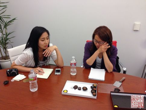 cocoabella executive collection picking chocolates