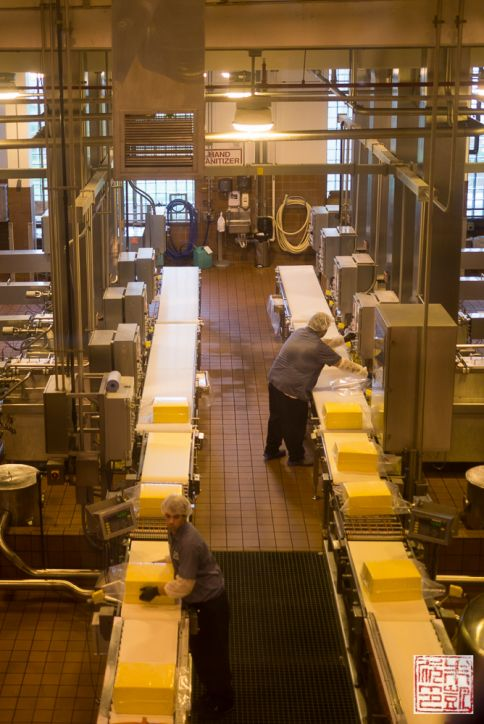 tillamook factory cheese