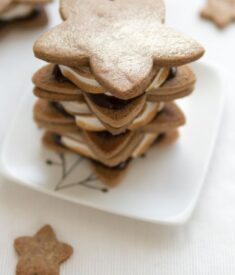 speculoos-star-smores-stack-11