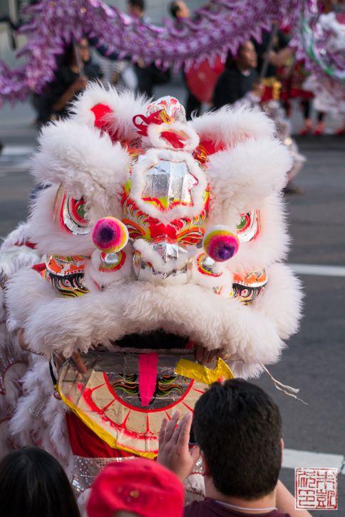 CNY parade lion head