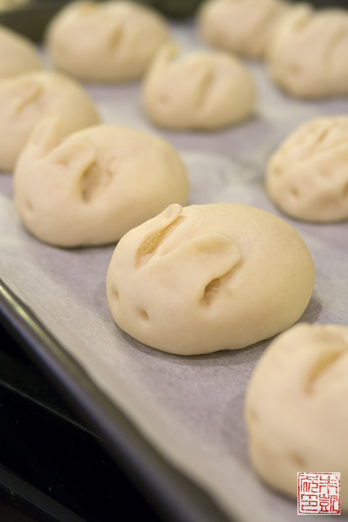 Rabbit Bunny Buns Before Baking