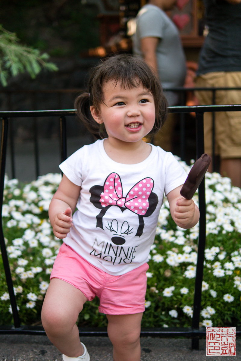 Ice Cream Disneyland
