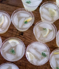 Rosemary Lemon Spritzer