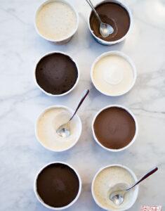 Vanilla and Chocolate Choctal Ice Cream Review