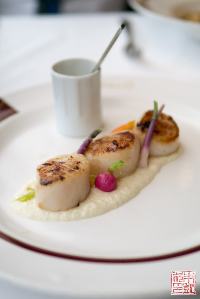 disney-wonder-palo-dinner-scallops