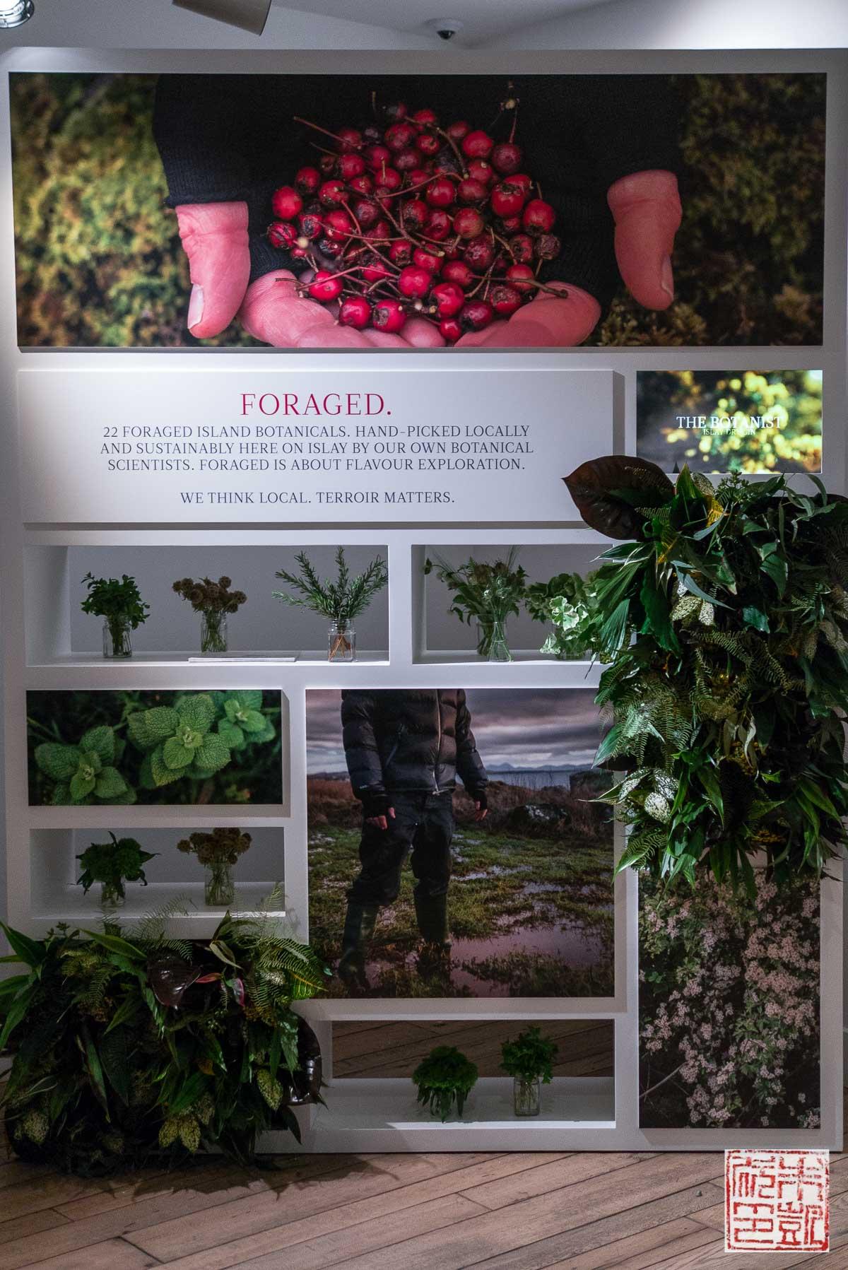 Botanist Poster