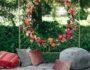 Park Winters Floral