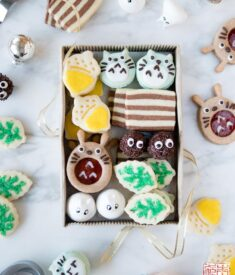 Totoro Cookie Box Flatlay