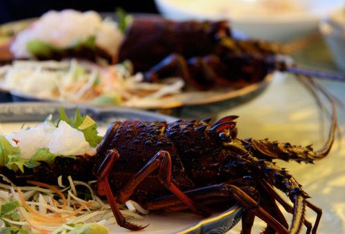 Lobstersashimi
